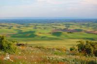 Mniej ograniczeń w zakresie obrotu nieruchomościami rolnymi